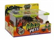 Wild Pets Ragno Interattivo con Luci al LED e Gabbietta Spider Habitat di Giochi Preziosi GPZ28012